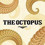 Octopus The Octopus