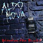 Aldo Nova Blood On The Bricks