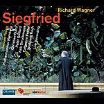 Simone Young Wagner: Siegfried