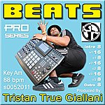 Beats Beats (S0052011 Am 88 Bpm) - Single