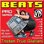 Beats Beats (S0042011 Am 85 Bpm) - Single