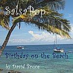David Bruce Birthday On The Beach - Single