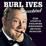 Burl Ives Snowbird