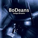 The BoDeans Indigo Dreams