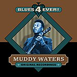 Muddy Waters Blues 4 Ever!