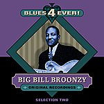 Big Bill Broonzy Blues 4 Ever! - Selection 2