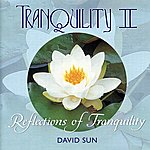 David Sun Tranquility II - Reflections Of Tranquility