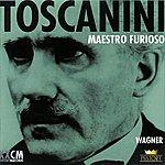 Arturo Toscanini Arturo Toscanini Vol. 2