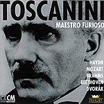 Arturo Toscanini Arturo Toscanini Vol. 3