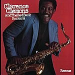 Clarence Clemons Rescue