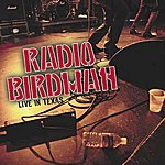 Radio Birdman Live In Texas