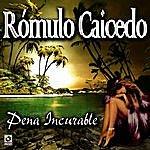 Romulo Caicedo Pena Incurable - Romulo Caicedo