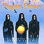 Medwyn Goodall Pagan Dawn