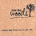 Into The Woods Where The River Meets The Sea