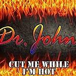 Dr. John Cut Me While I'm Hot