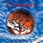 Cosmos Skygarden