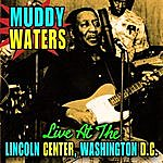 Muddy Waters Live At The Lincoln Center, Washinton D.C.