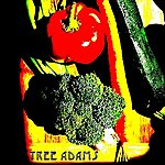 Tree Adams Band If You Were My Vegetable - Single