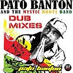 Pato Banton Positive Vibrations Dub Mixes