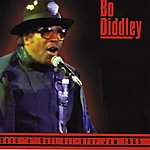 Bo Diddley Rock 'n' Roll All-Star Jam 1985