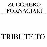 Tribute Tributo A Zucchero Fornaciari