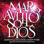 Andy Park Maravilloso Dios