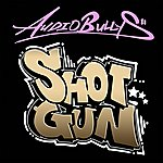 Audio Bullys Shotgun (Basher Remix)