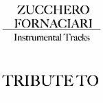 Tribute Tributo A Zucchero Fornaciari (Karaoke)
