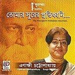Rabindranath Tagore Tomar Surer Pratidhani