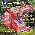 Anthony Goldstone Tzigane - A Treasury Of Gypsy Inspired Music