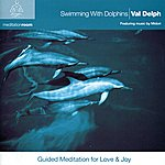 Midori Swimming With Dolphins - Guided Meditation