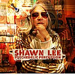 Shawn Lee Psychedelic Percussion