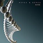Rose Ashes & Bones Ep
