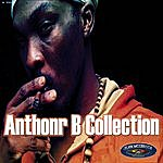 Anthony B Anthony B Collection