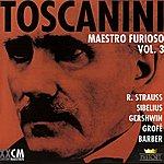 Arturo Toscanini Arturo Toscanini Vol. 5