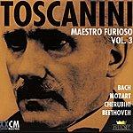 Arturo Toscanini Arturo Toscanini Vol. 1