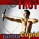 Troy Tantra Cupid - Single