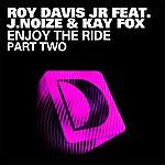 Roy Davis Jr. Enjoy The Ride (Part 2)