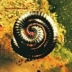 Nine Inch Nails Closer To God