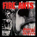 Fire Ants Stripped