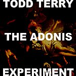 Todd Terry The Adonis Experiment VI