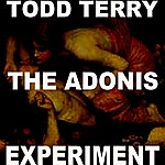 Todd Terry The Adonis Experiment I