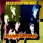 The Flamin' Groovies Absolutely The Best