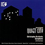 Paul Cohen Quiet City