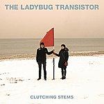 The Ladybug Transistor Clutching Stems