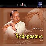 N. Ramani Nadopasana - Vol. 2