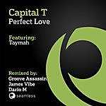 Capital T Perfect Love