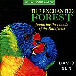 David Sun The Enchanted Forest
