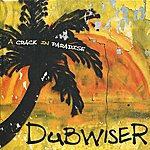 Dub Wiser A Crack In Paradise