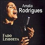 Amália Rodrigues Fado Lisboeta